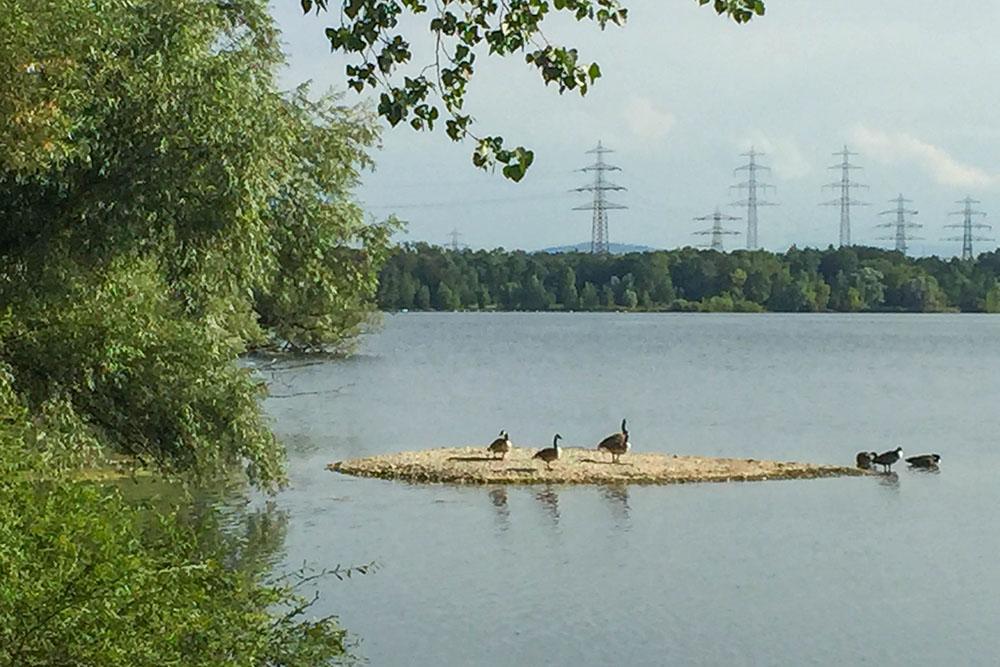 Seen Um Karlsruhe