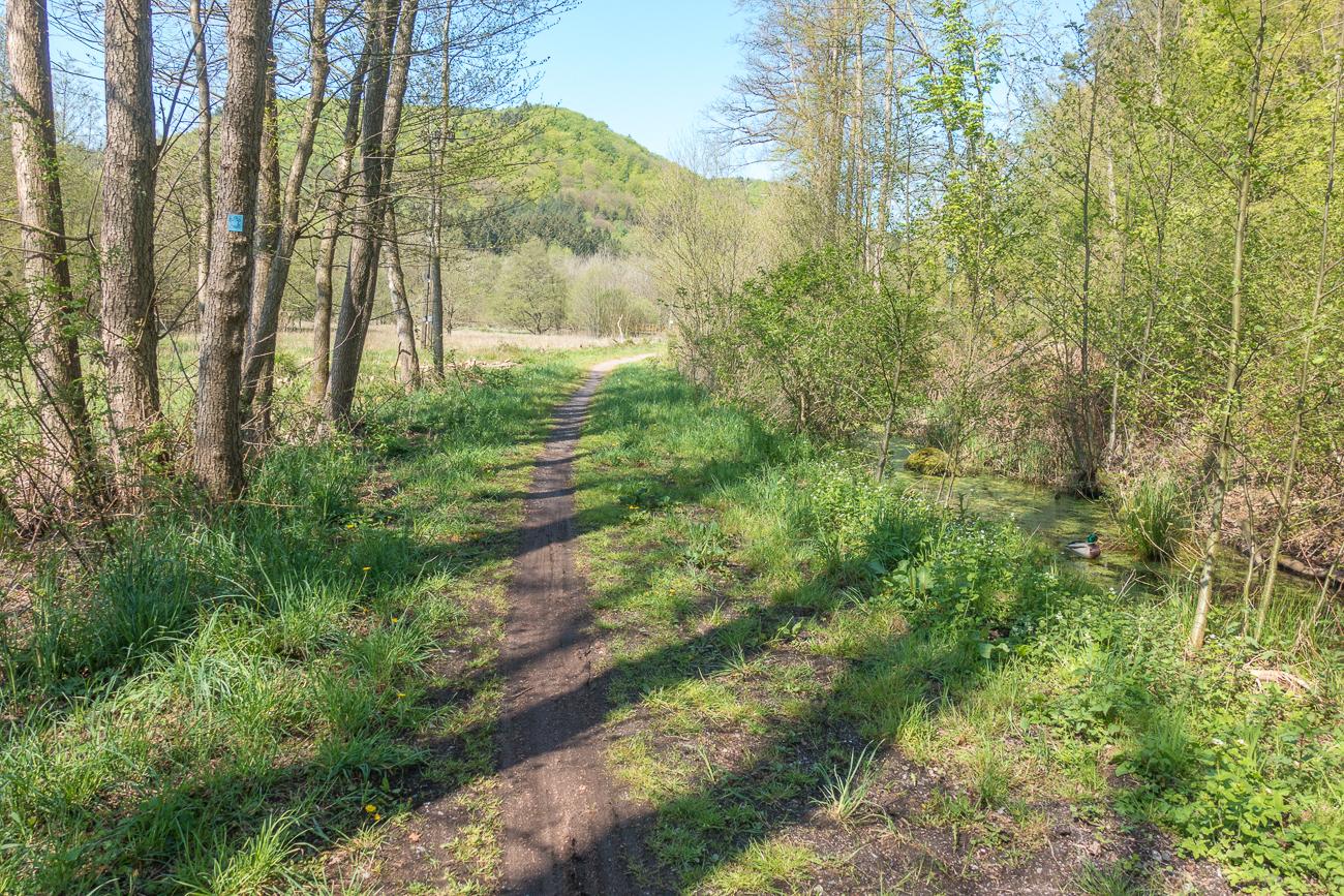 Single trails saarland